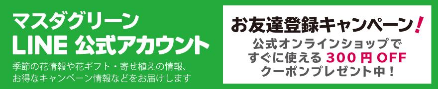 マスダグリーン公式LINEお友達募集中!